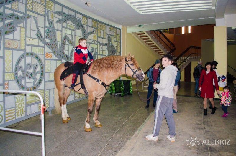 Фото с цирковой лошадкой