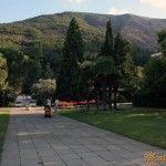 Парк санатория «Крым»