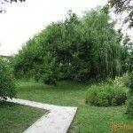 Парк в Кучугурах