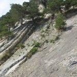 По пути к скале «Парус»