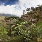 Природа в горах Ялты