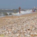 Ракушечный пляж у базы отдыха «Лотос»