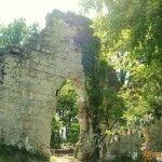 Развалины Византийского храма
