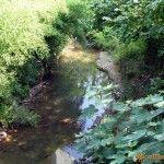 Река Адзлагара в Гудауте