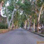 Улица Нартаа в Гаграх