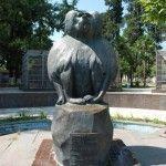 В Сухумском обезьяннем питомнике
