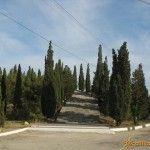 Кипарисовая аллея в Судаке