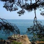 Вид на море из Воронцовского парка