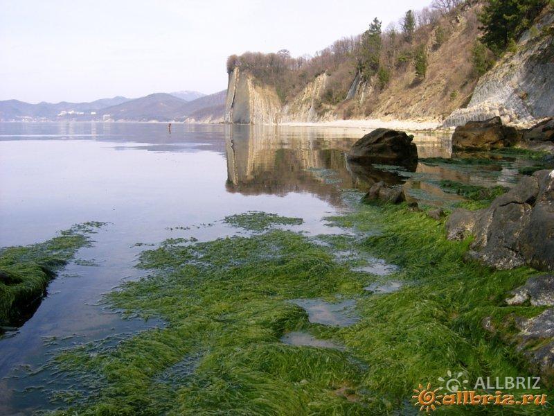 Вид на скалу Киселева