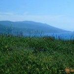 Вид с холма на море