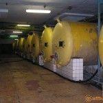 Винный цех завода в Абрау-Дюрсо