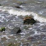Азовское море в Тамани