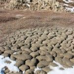 Поле грязевого вулкана Гефест на Гнилой горе