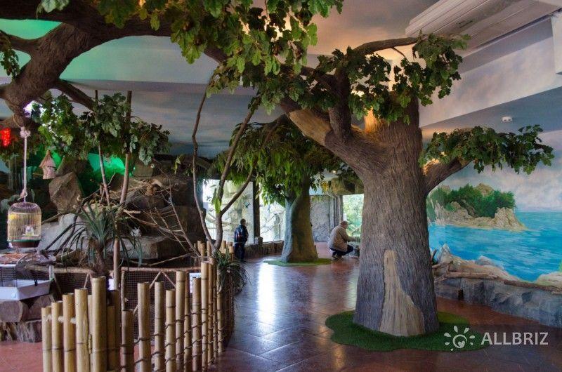 Зоопарк «Рио» в Сочи