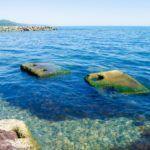 Море в Вишневке