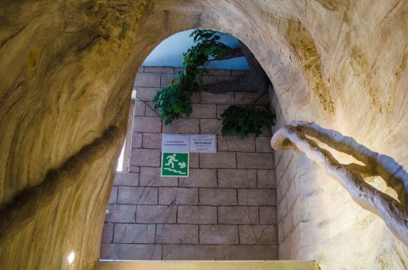 Лестница на 2 этаж пингвинария
