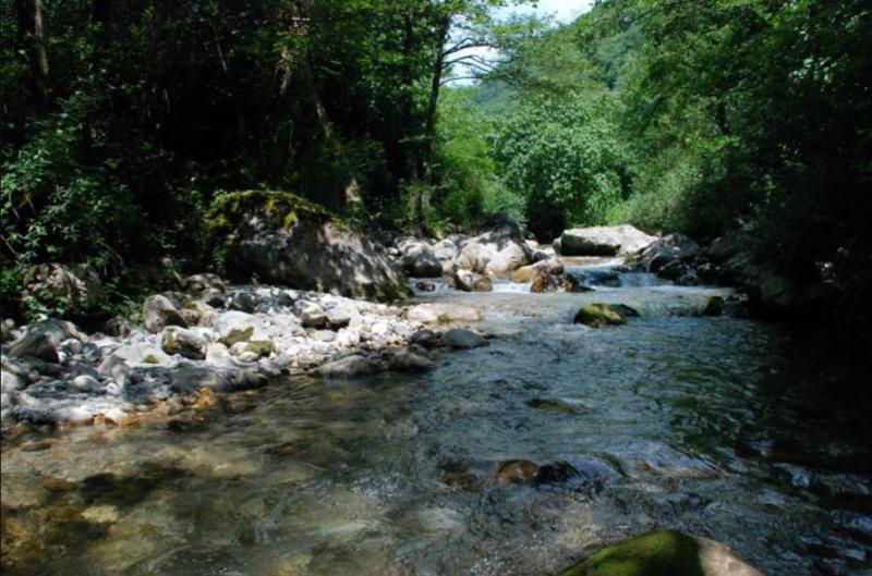 Река Жоэквара