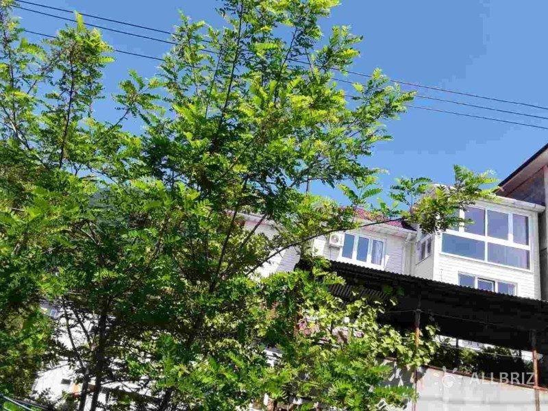 Абхазия частный сектор уморя Гагра Спортивная улица 20 а