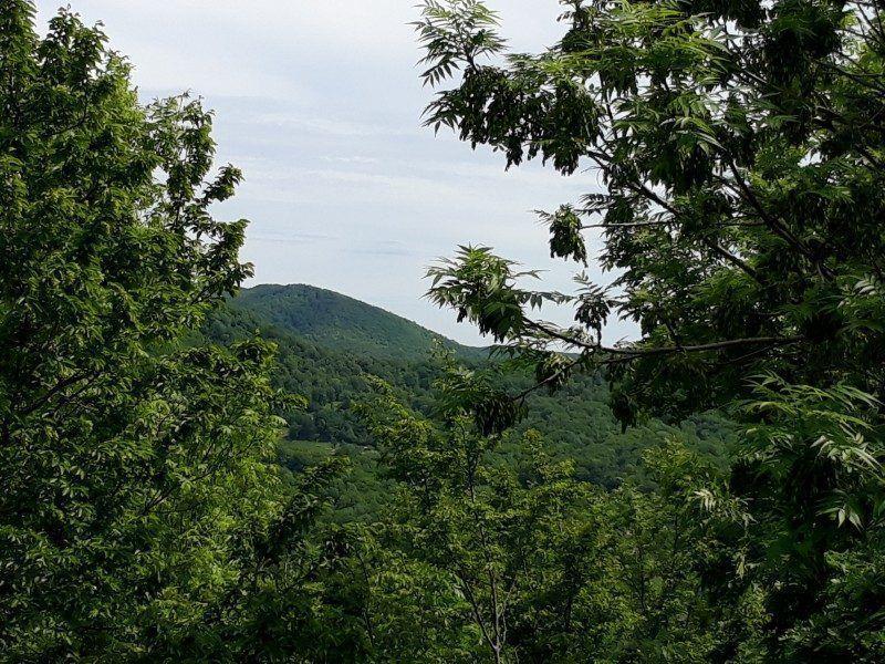 вид на горы с балкона
