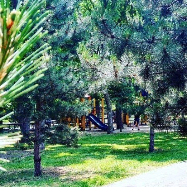 Парк и детская площадка через дорогу
