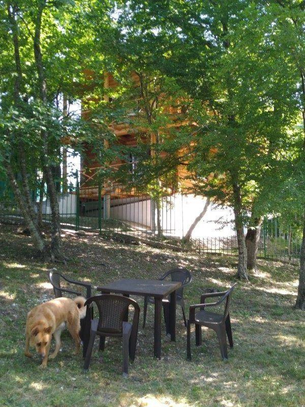 место для отдыха под деревьями